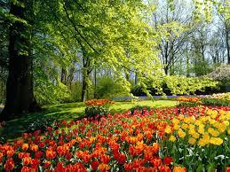 Celebrating the arrival of spring: Ostara & Vernal Equinox