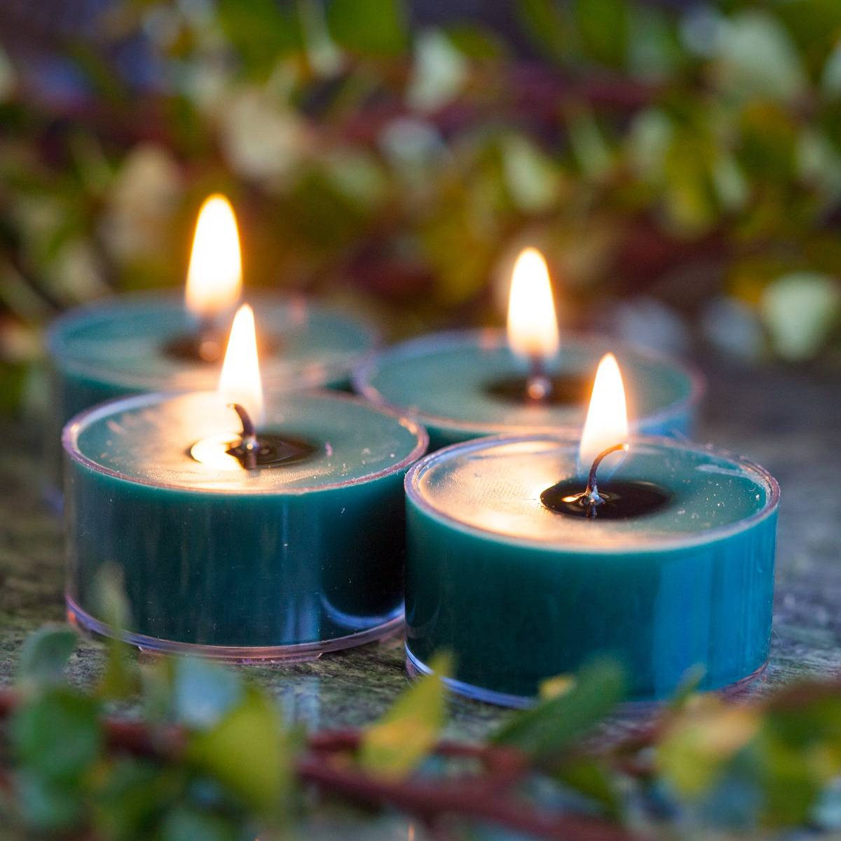 Queens Eye Tea Lights 2_3