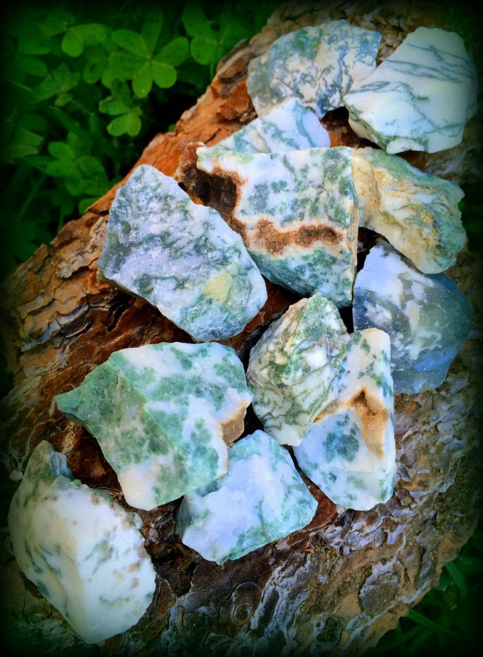 Natural Tree Agate - The Stability Stone for weathering life's storms and remaining grounded