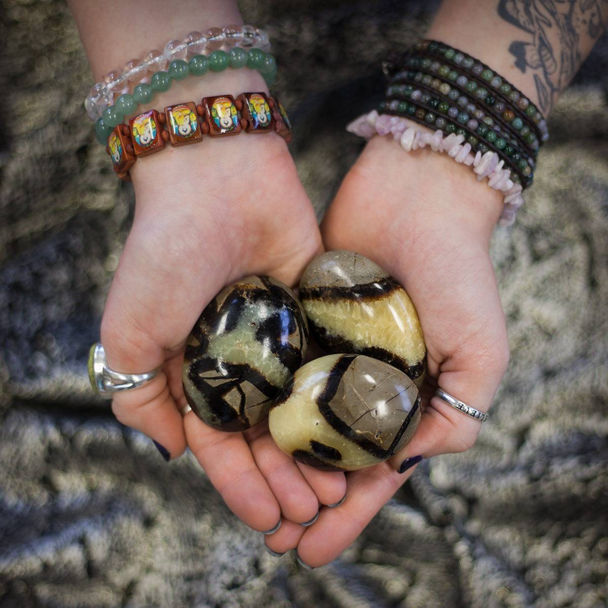 Septarian Palm Stone 3_27