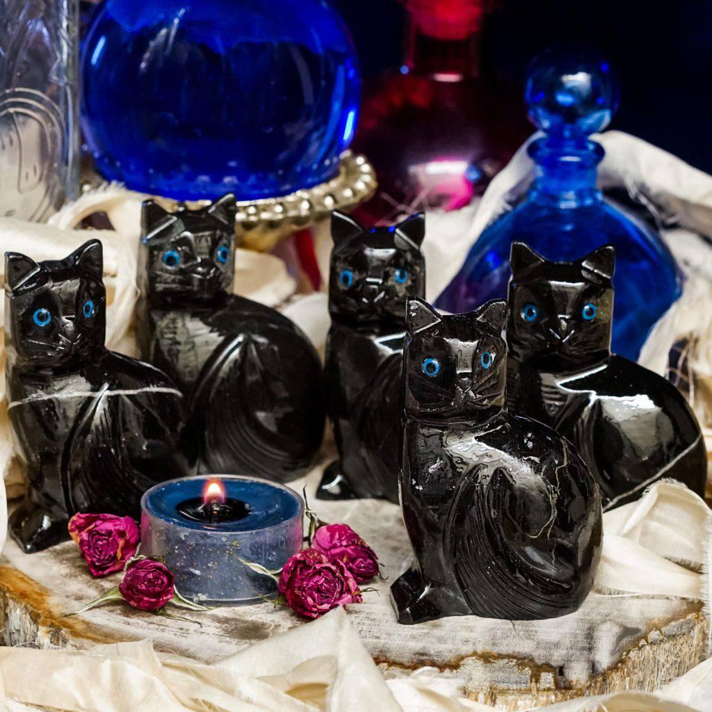 black onyx cats