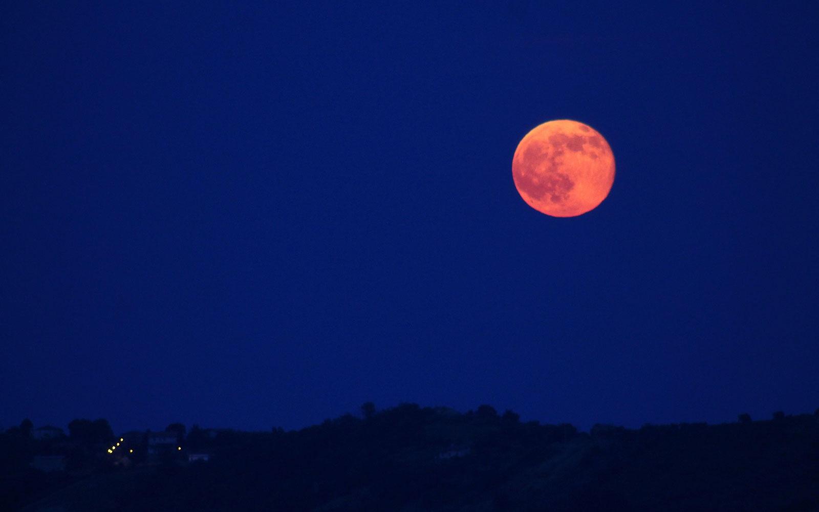 клубничная луна фото матвея банкетный
