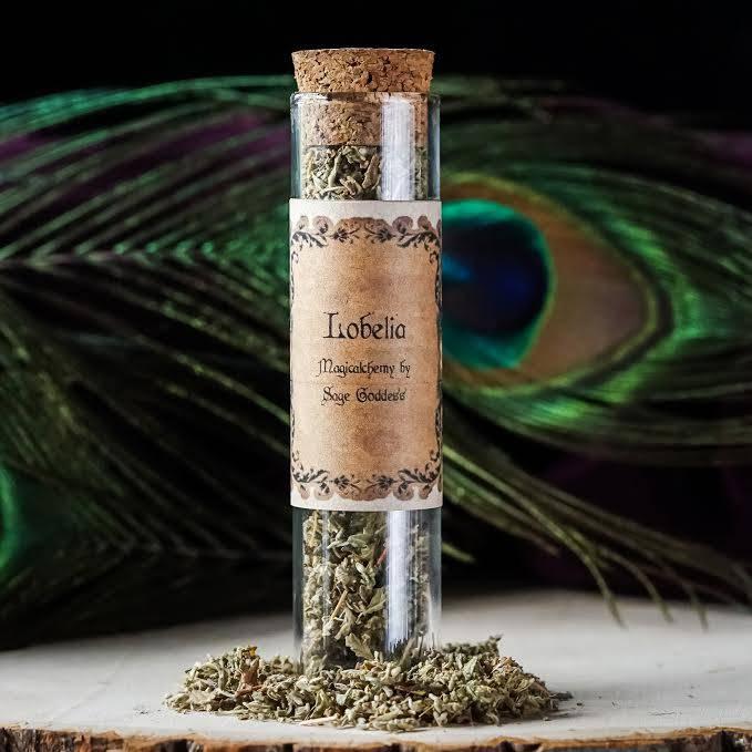 Lobelia herbal magic jar