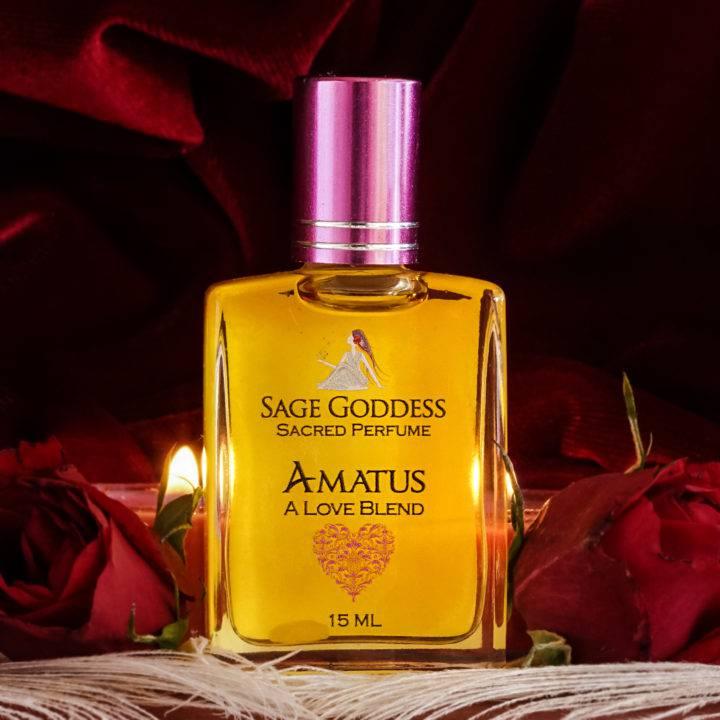 amatus perfume