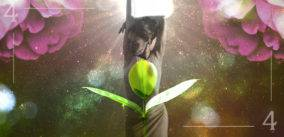 The Return of the Light and the First Seedling Sprouts: April Numerology and Power Days