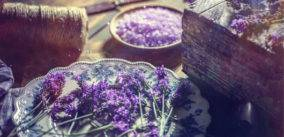 What Is Aromatherapy and How Does It Work?