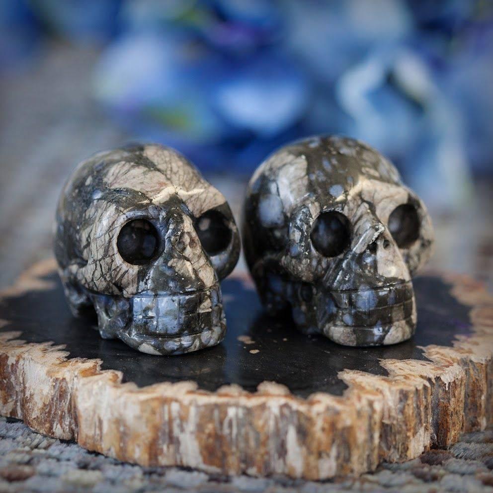 Que Sera Skulls