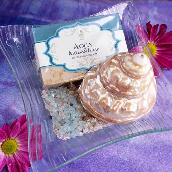 aqua soap and shell set