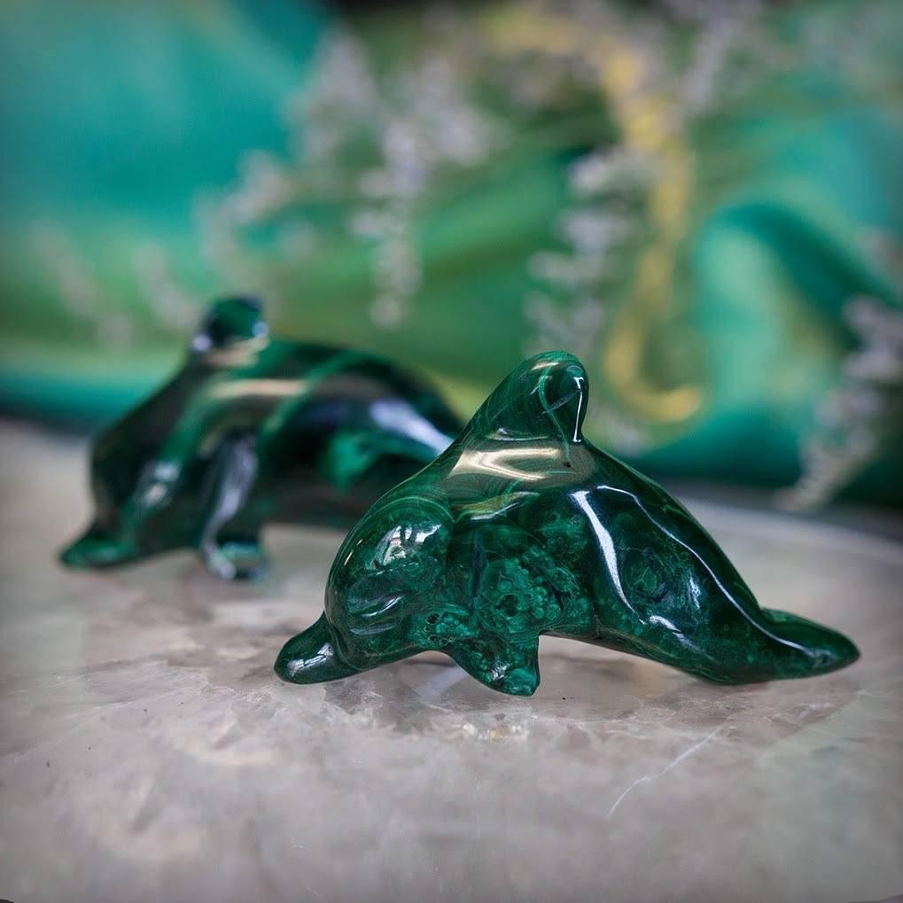 Malachite Dolphin