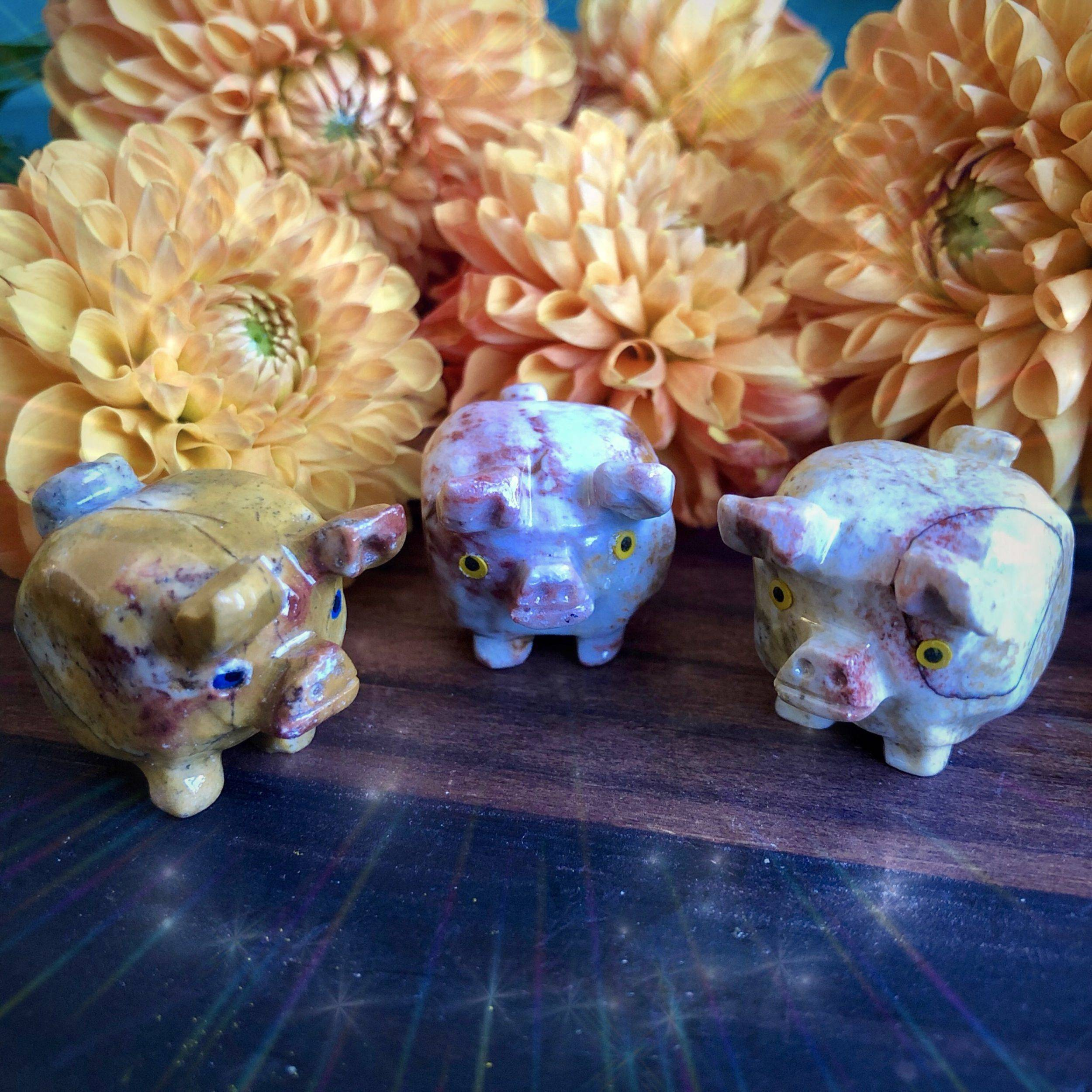Soapstone_Good_Luck_Pig_4of4_8_29