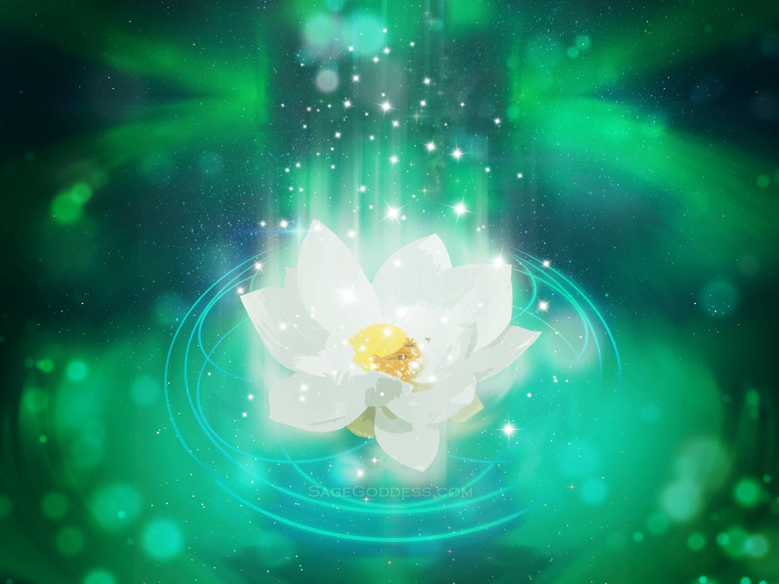Free Custom Sage Goddess Downloadable Lotus Flower Wallpaper Sage