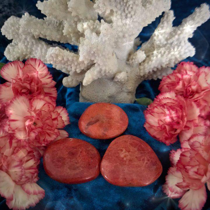 Vital_Passion_Red_Coral_Palm_Stone_1of3_1_21