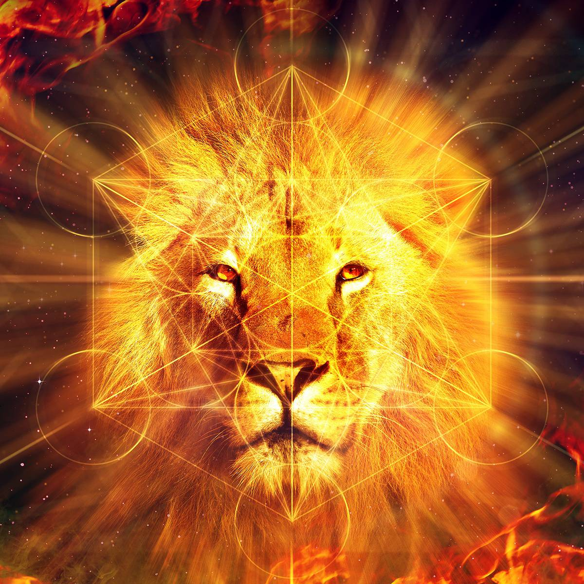 Lion Metatron Website