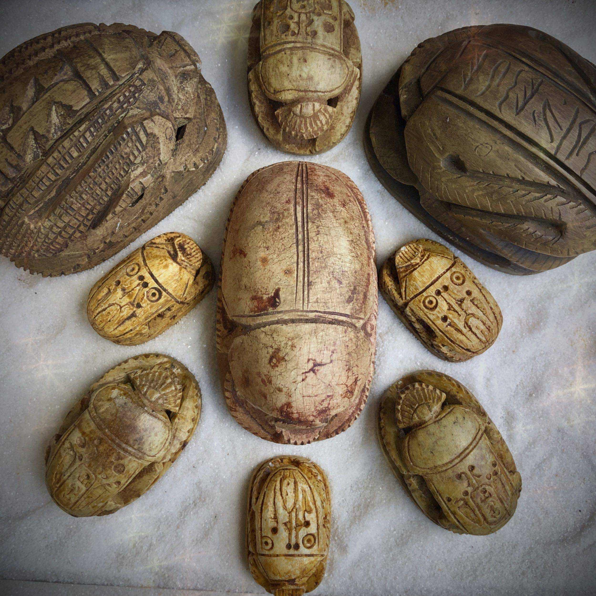 Egyptian_Scarab_Beetles_DD_1of4_8_4