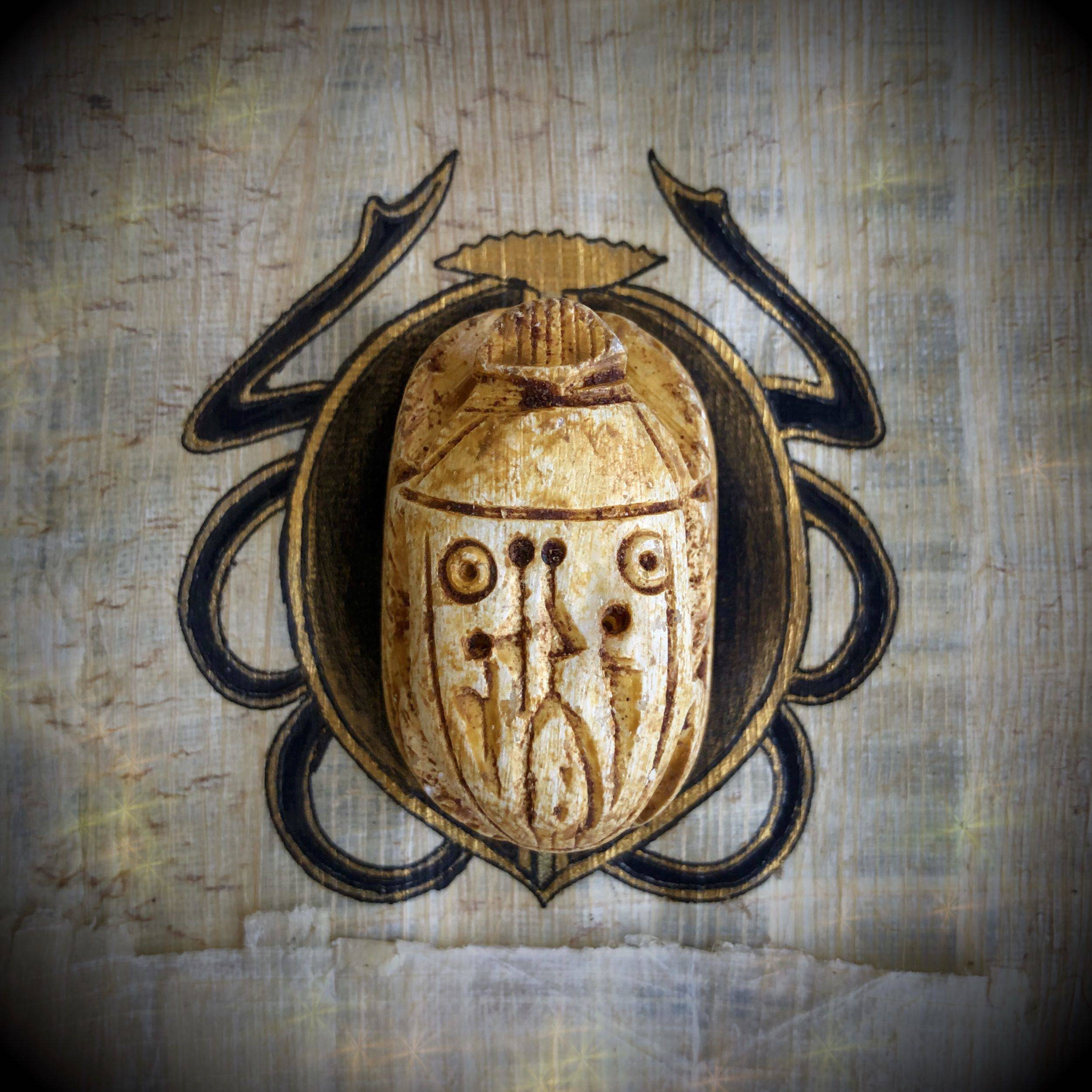 Egyptian Scarab Beetles for transformation and regeneration