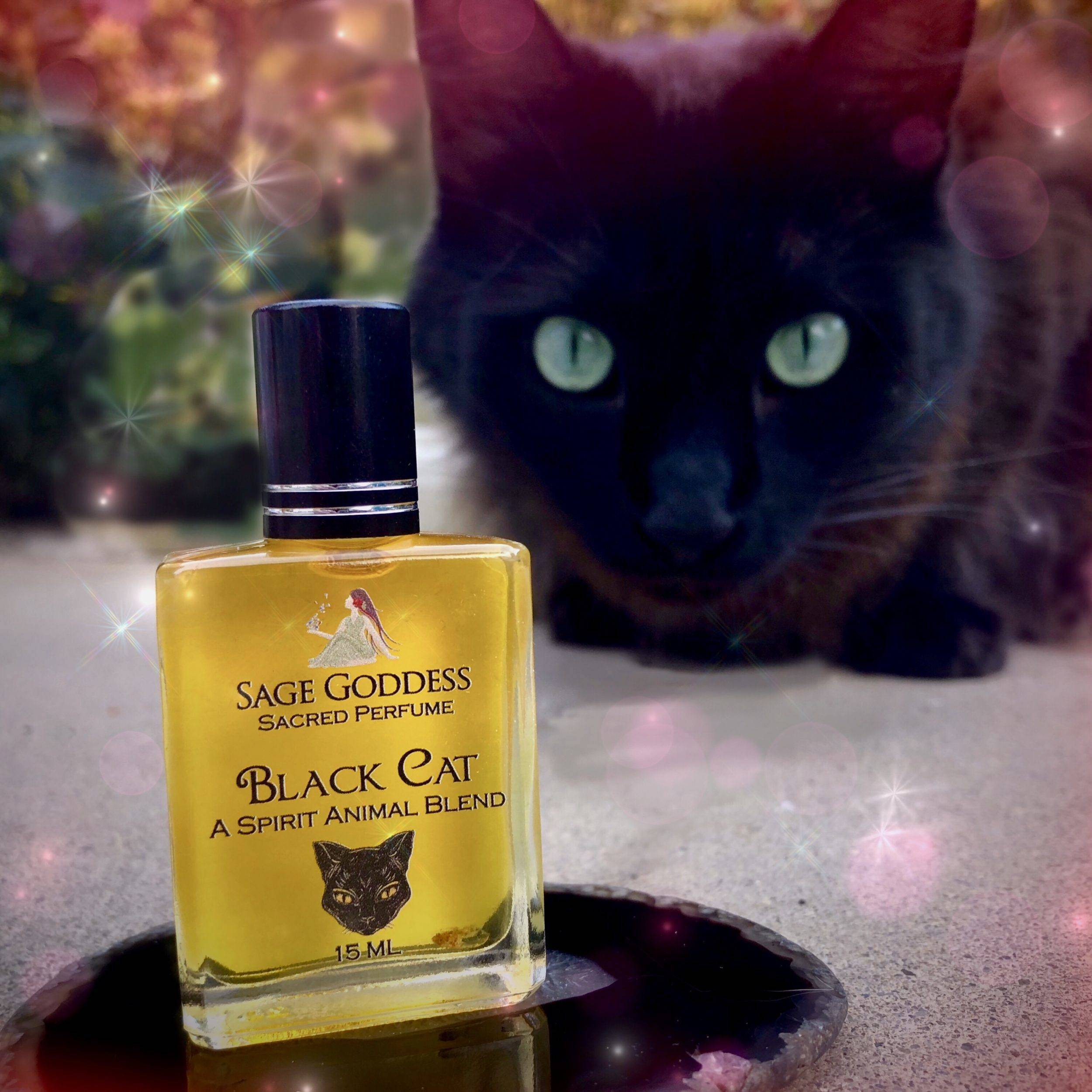 Black Cat Perfume for introspection, mystery, and otherworldly magic
