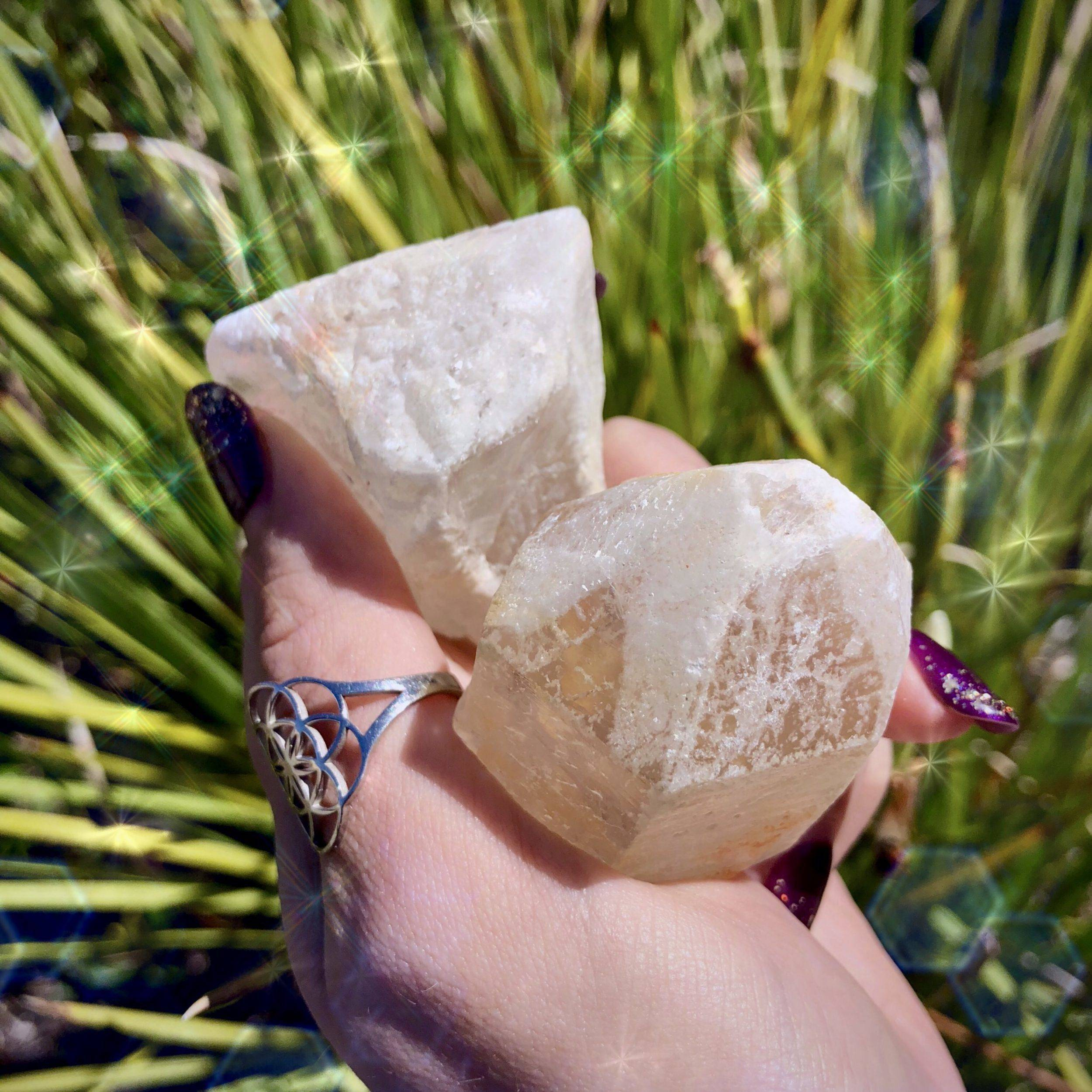 Denver_After_Dark_Dreamsicle_Lemurian_DD_Small_5of6_9_19