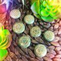 Green_Aventurine_7_Chakra_Palm_Stone_Set_2of3_9_6