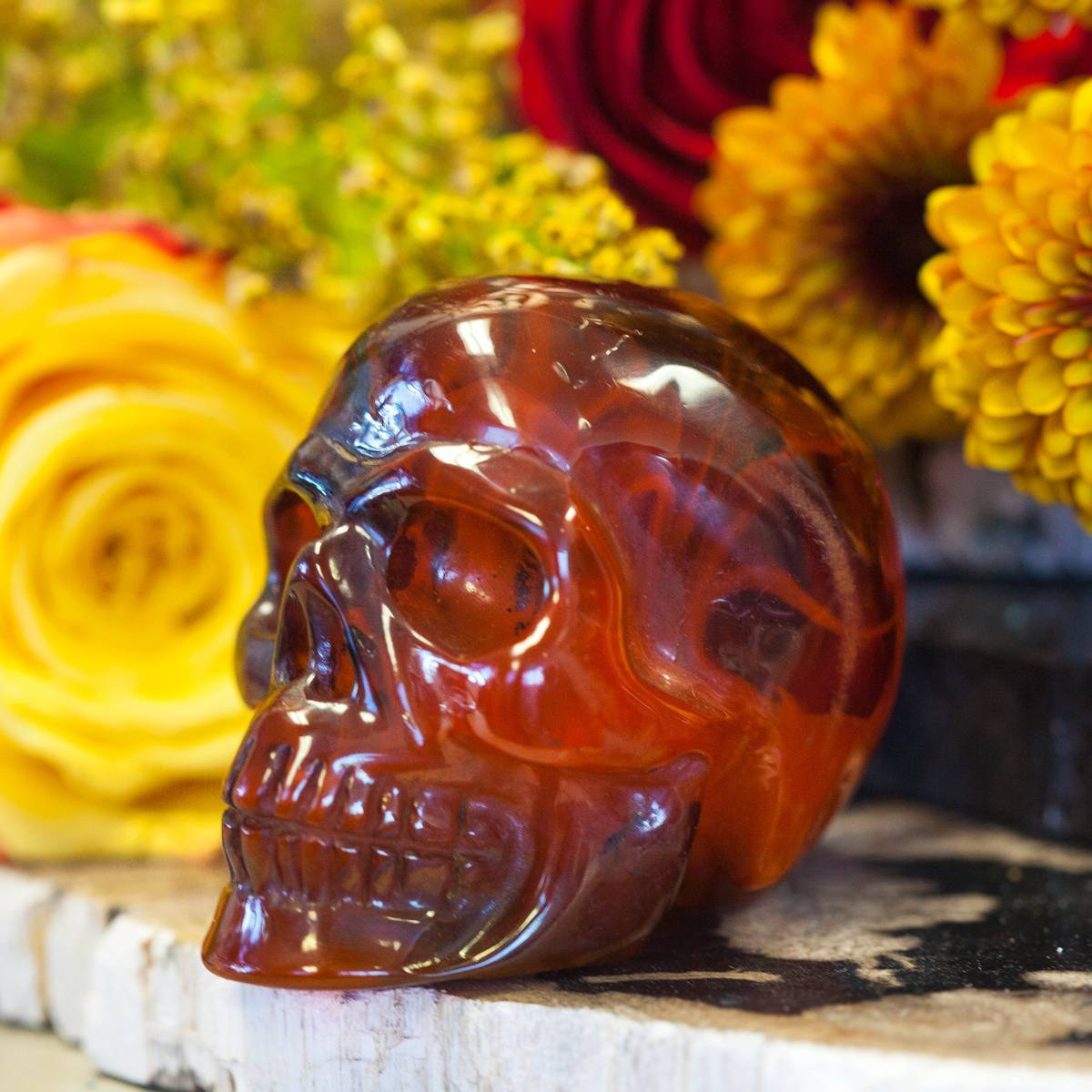 Samhain_Skulls_2of2_10_1