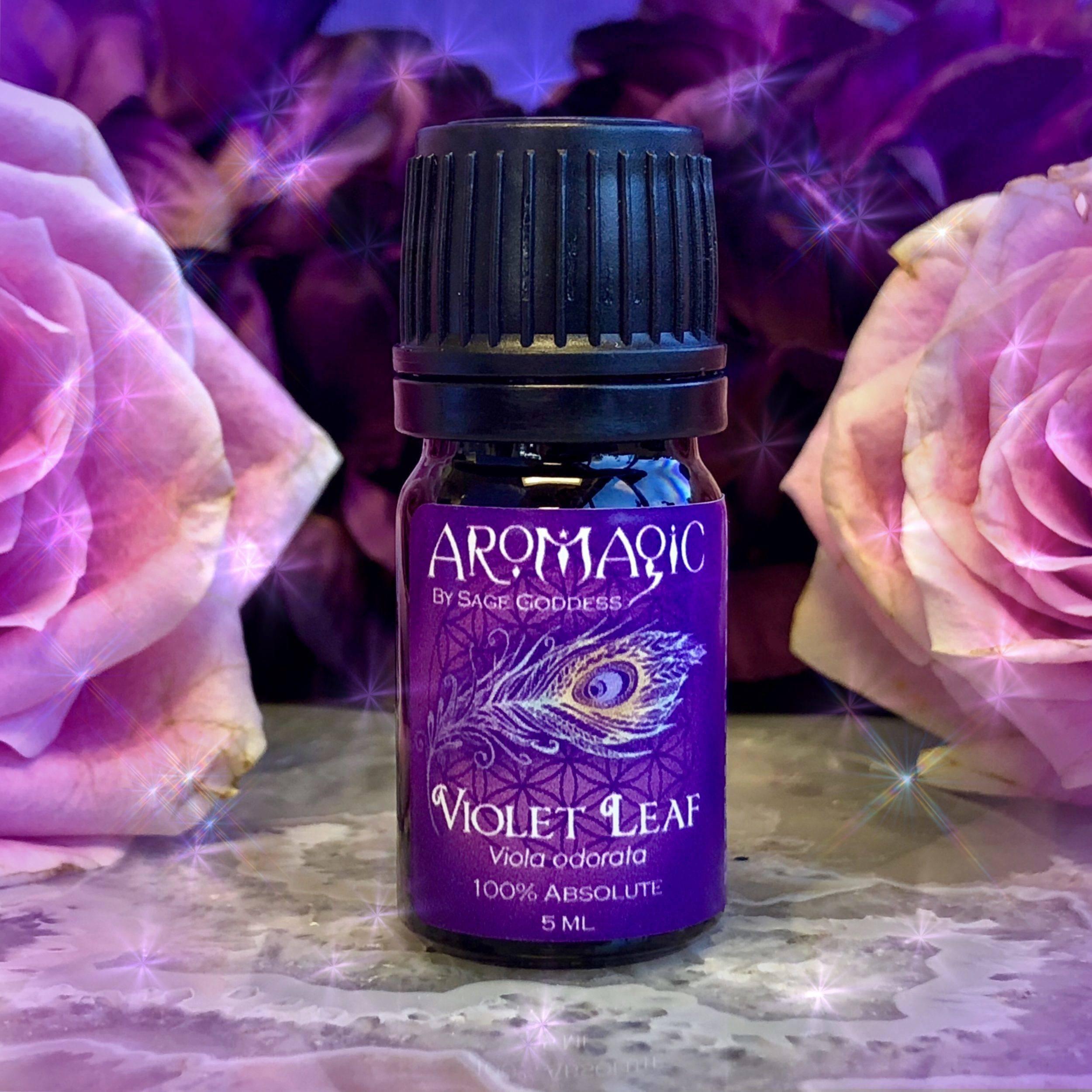 Violet_Leaf_Absolute_1of1_10_12