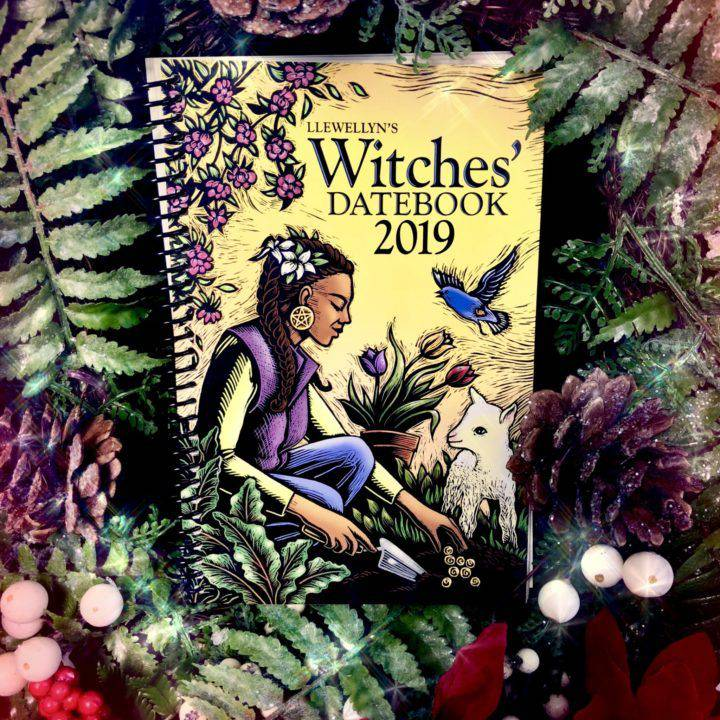 Llewellyn's_2019_Witches'_Datebook_1of3_11_22