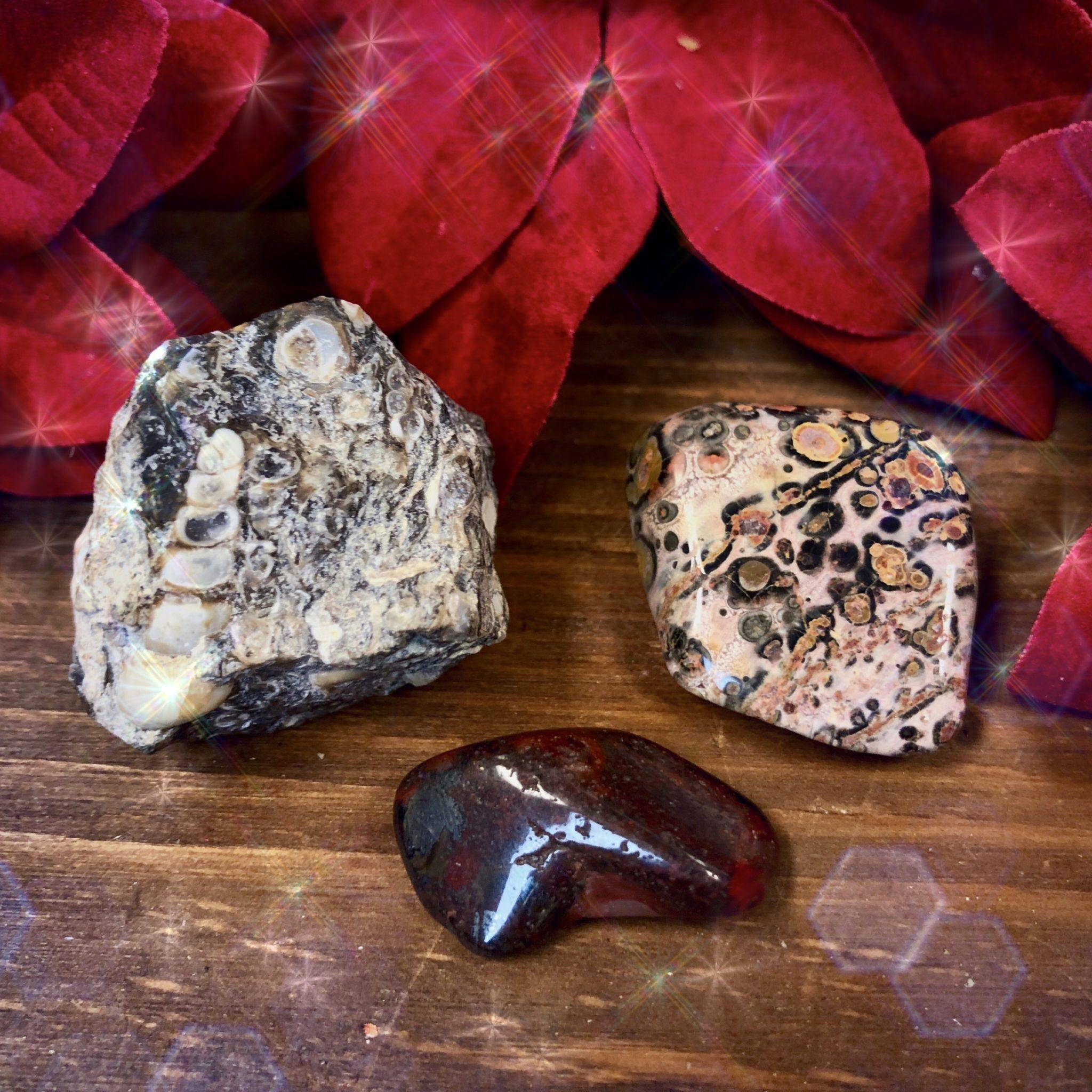 New Moon Spirit Animal Set: Elephant for wisdom and ancestral healing