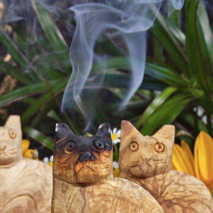 Palo Santo Cats