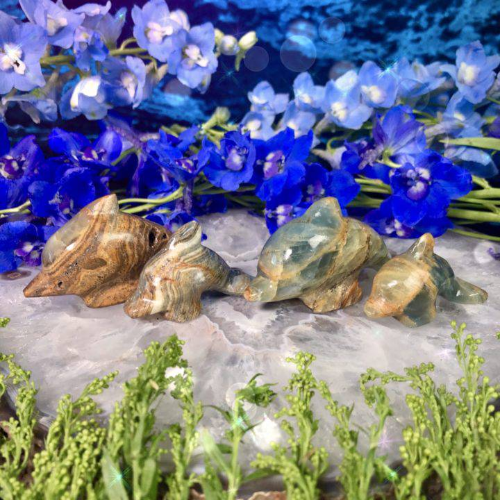 Lemurian_Blue_Calcite_Dolphins_1of4_4_26