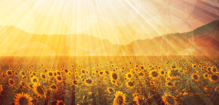 Litha/Summer Solstice – A Time to Celebrate and Shine