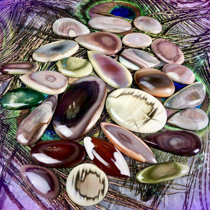Imperial_Jasper_Cabochons_Wholesale_1of3