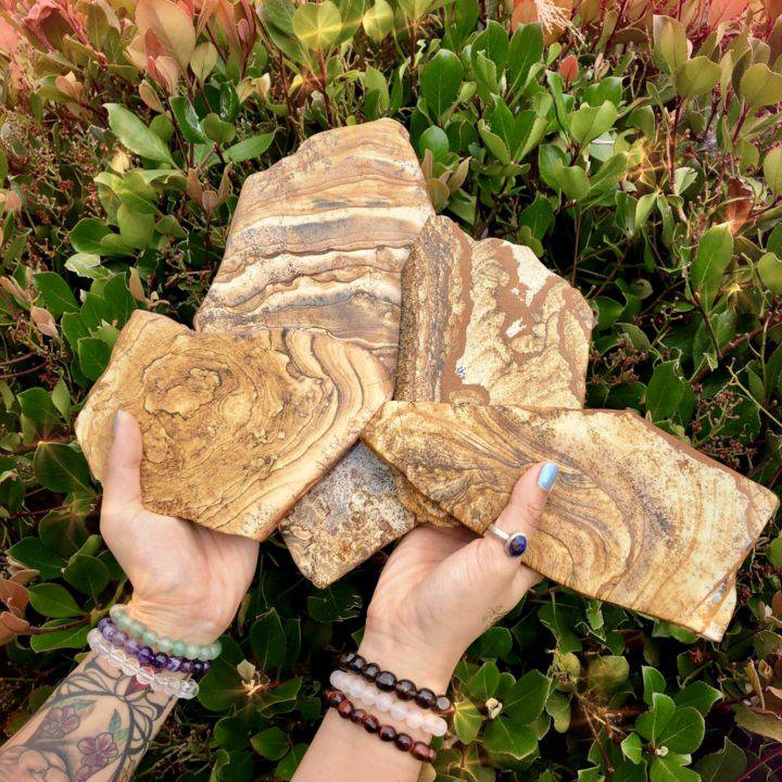 Law_of_Attraction_Picture_Jasper_Charging_Plates_with_Visualization_Grid_DD_4of6_6_22