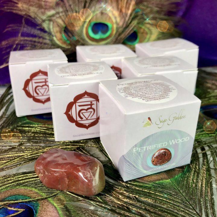 Petrified_Wood_Gemstone_Chakra_Box_Wholesale_1of3