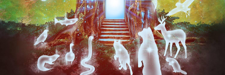 What Are Spirit Animals?