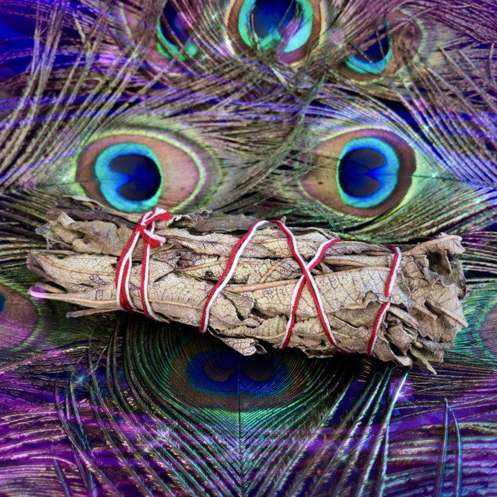 Peacock_New_Moon_Spirit_Animal_Set_for_Ritual_with_Athena_8of8_7_2