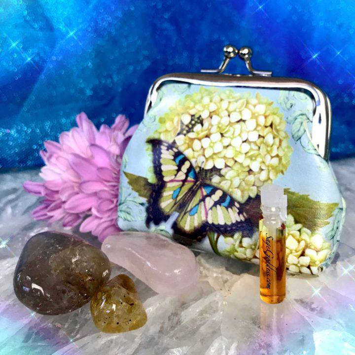 Butterfly Bags with Surprise Stones_8_6_3of3