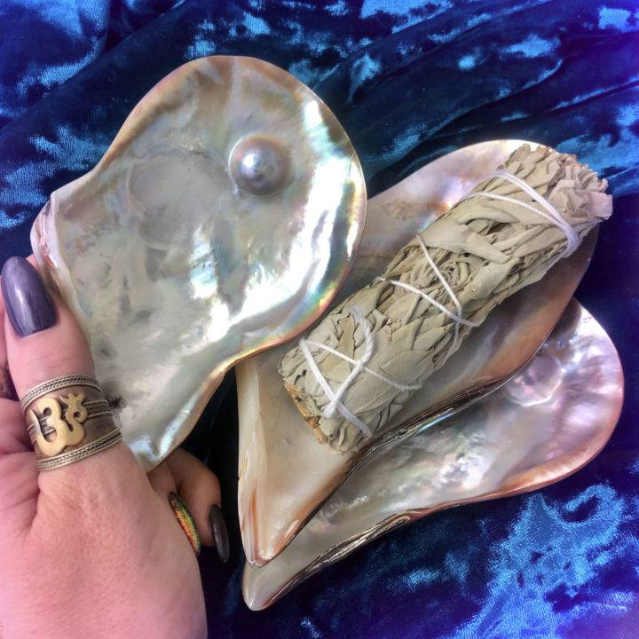 Pearls_of_Wisdom _Abalone_Smudging_Shells_1of1_9_15