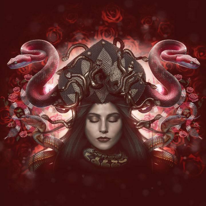snake_new_moon_spirit_animal_set