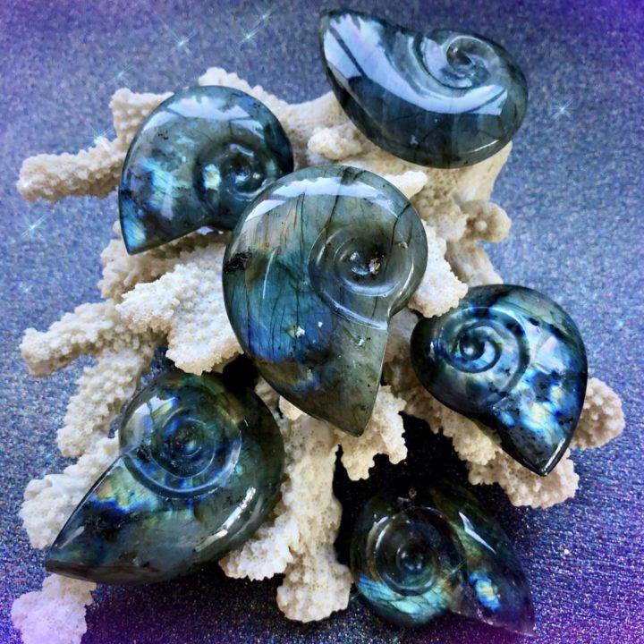 Fibonacci Labradorite