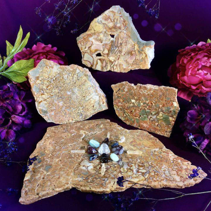 Ascended Masters Ibis Jasper Soul Star Charging Plates with Crystal Grid