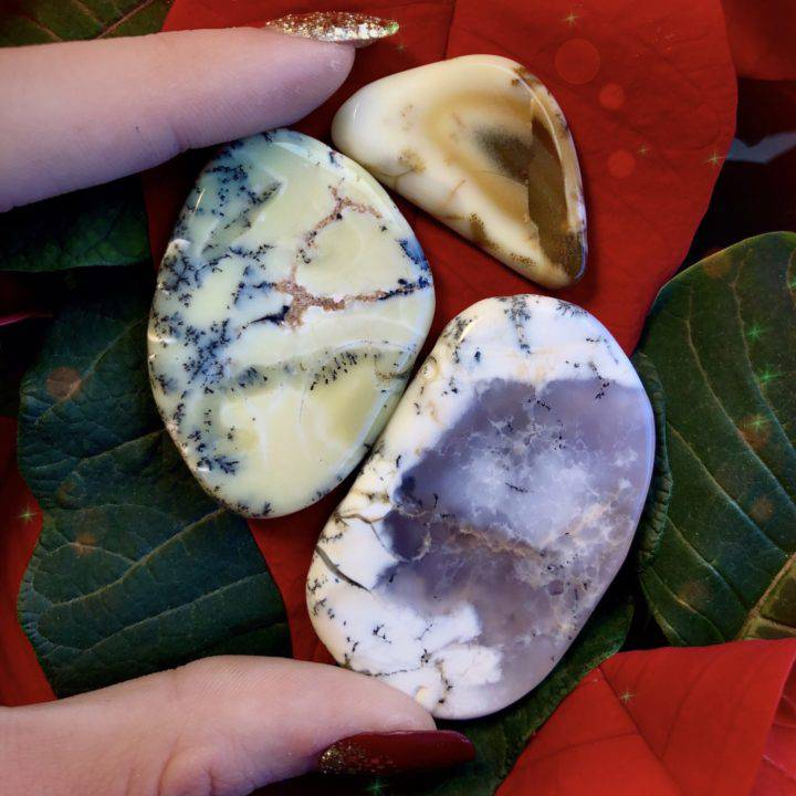 Dendritic White Opal Slices