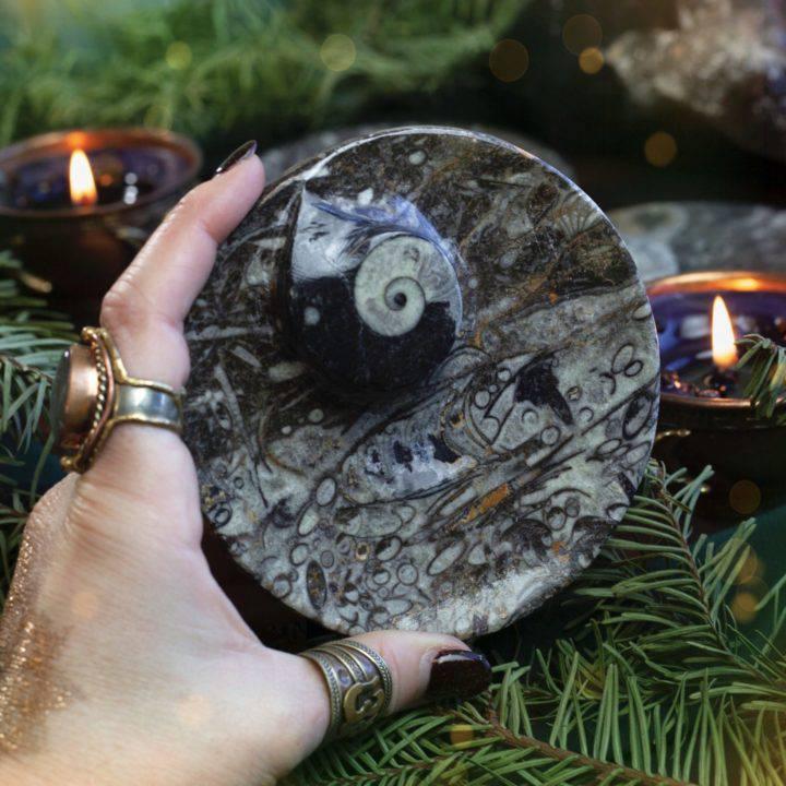 Ancient Wisdom Orthoceras Altar Plates