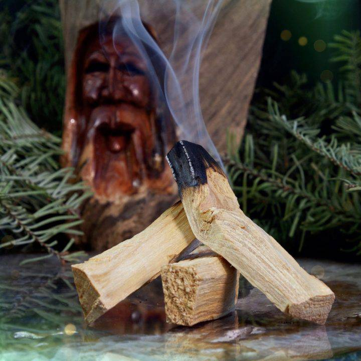 Grandfather Trees EO Infused Palo Santo