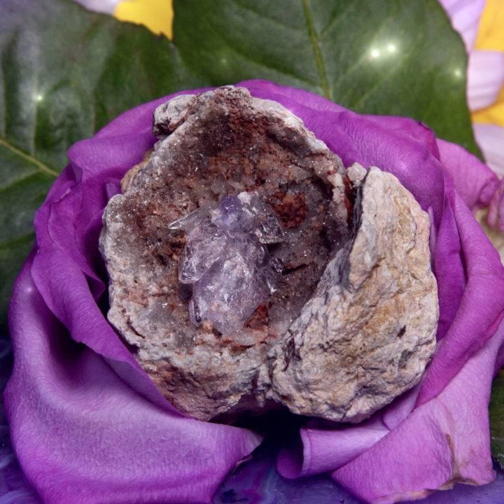 Love and Enlightenment Vera Cruz Amethyst Geodes