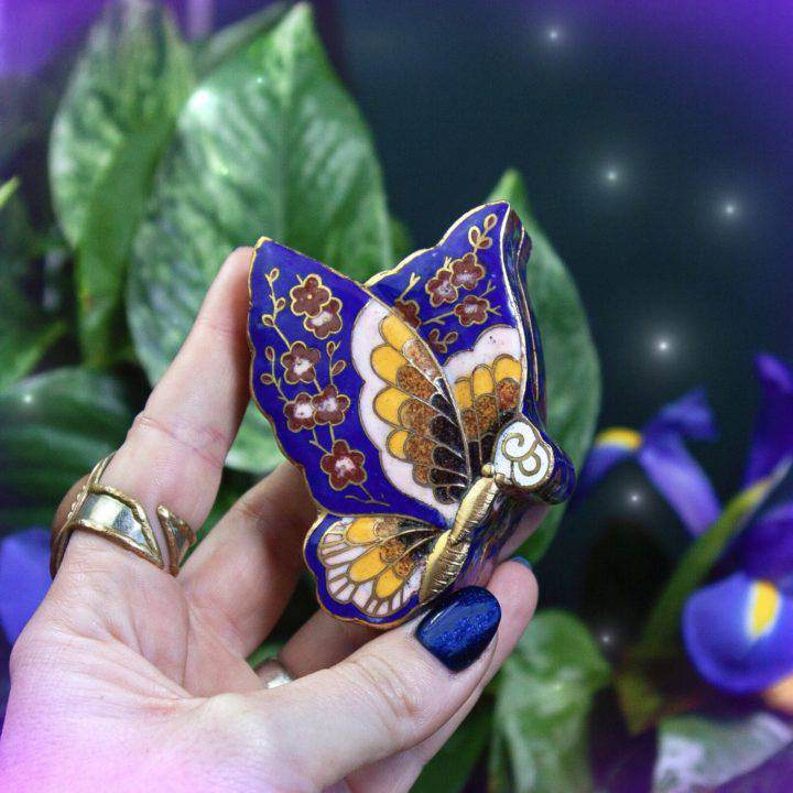 Butterfly Transformation Boxes