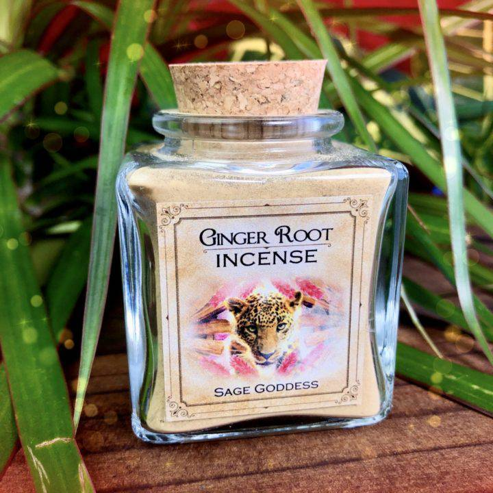 New Moon Enchanted Plant Wisdom: Ginger Root and Palo Santo Set