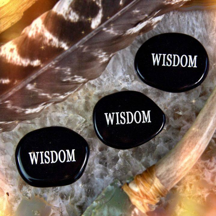 Black Obsidian Wisdom Palm Stones