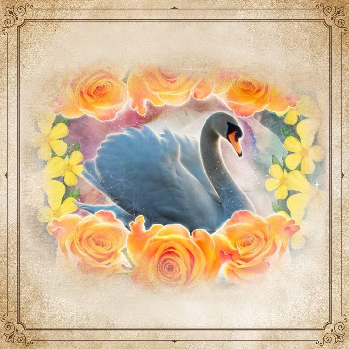 New Moon Enchanted Plant Wisdom: Damiana and Rose Set