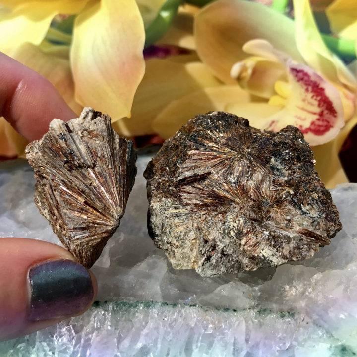 Natural Lamprophyllite