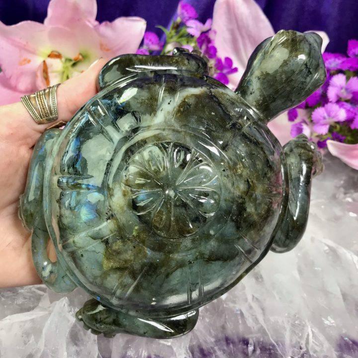 Labradorite Turtle