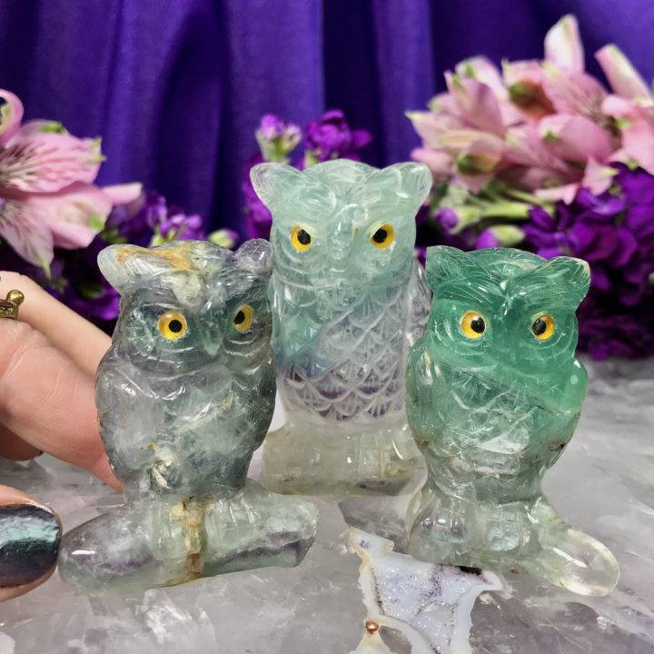 Rainbow Fluorite Wise Owls